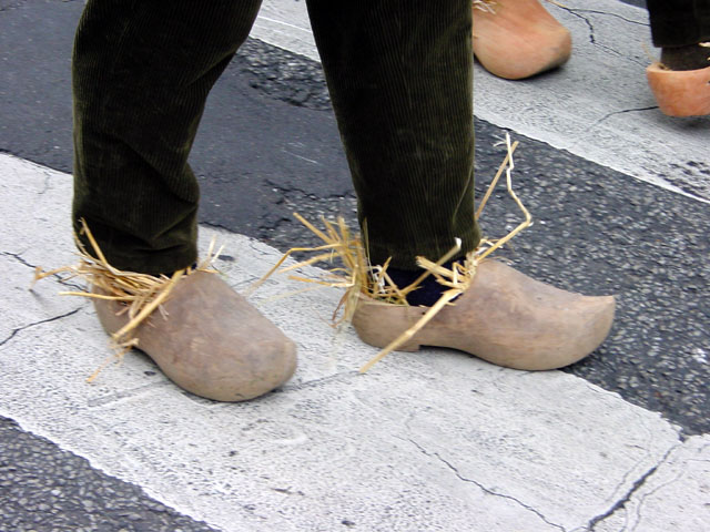 Walk In Wooden Shoes